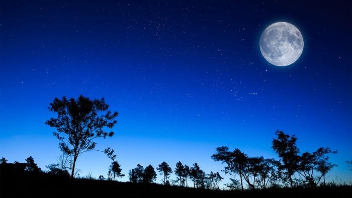 van ta mot dem trang dep Văn mẫu tả một đêm trăng đẹp