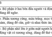 Soạn văn bài Luyện từ và câu: Từ nhiều nghĩa