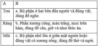 soan van bai luyen tu va cau tu nhieu nghia Soạn văn bài Luyện từ và câu: Từ nhiều nghĩa